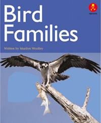 Bird Families
