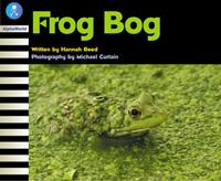 Frog Bog