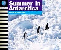 Summer in Antarctica