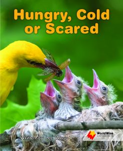 Hungry, Cold or Scared