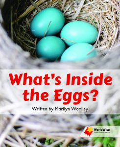 What's Inside the Eggs?