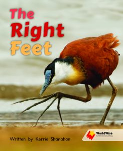 The Right Feet