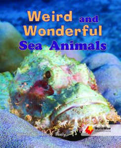 Weird and Wonderful Sea Animals