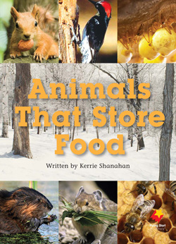 Animals That Store Food