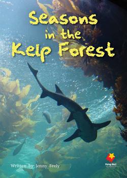Seasons In the Kelp Forest