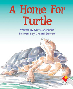 A Home For Turtle