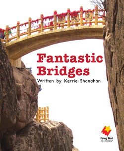 Fantastic Bridges