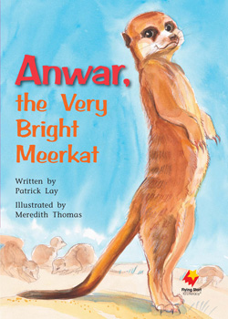Anwar, The Very Bright Meerkat
